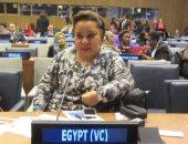 هبة هجرس: إتاحة الكشف الطبي لكل أشكال الإعاقة للحصول على سيارة مجهزة