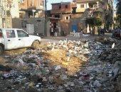 صور.. اضبط مخالفة.. قرية كفر عسكر بالغربية تعانى من الإهمال وانتشار القمامة