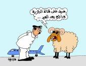 الخرفان تهرب من عيد الأضحى إلى حظيرة الجزيرة القطرية
