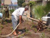 صور.. انطلاق حملة زراعة 1000 شجرة بالقاهرة بحى مصر القديمة