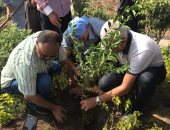 صور.. نقابة الزراعيين تبدأ فى تنفيذ مبادرة الرئيس لزراعة مليون شجرة مثمرة