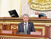 أمين سر المجلس الفلسطينى: نرفض مخططات إنشاء دولة فلسطينية فى جزء من سيناء