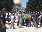 مستوطنون يدنسون المسجد الأقصى ويؤدون صلوات تلمودية فى باب الرحمة