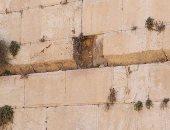 """صور.. سقوط حجر من حائط """"البراق"""" بسبب الحفريات أسفل الأقصى"""