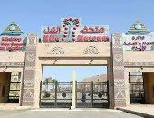 مدير متحف النيل بأسوان: عدد الزوار أوشك على المليون منذ افتتاحه قبل 3 سنوات