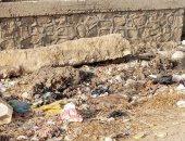 """قارئ يشكو من انتشار القمامة فى شوارع """"أبو شميس"""" بالشرقية"""