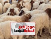 موجز أخبار الـ6.. محافظة القاهرة تحذر من ذبح الأضاحى بالشوارع: غرامة 5 آلاف جنيه