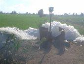 صور.. اضبط مخالفة.. ورد النيل ورغاوي مخلفات المصانع تلوث مياه الرى فى قلين