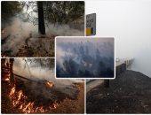 النيران تلتهم المنازل فى أمريكا وتحرق أهالى كاليفورنيا