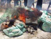 """إعدام 38 شيكارة دقيق بلدى """"متحجر"""" غير صالح للاستهلاك الآدمى بديروط"""
