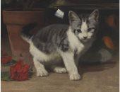 شاهد.. قطة للبيع فى مزاد كريستى بـ2000 دولار.. تعرف على التفاصيل