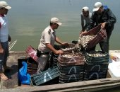 صور.. الأمن يزيل التعديات على بحيرة البرلس ويضبط 385 مخالفة