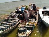 حملة مكبرة على بحيرة البرلس لإزالة التعديات وضبط المخالفين