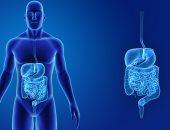 خبراء فى الجهاز الهضمى والأشعة التداخلية  بالمعادى والإسكندرية العسكرى