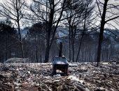 صور.. فرق الإطفاء الإسبانية تسيطر على حريق دمر 3200 هكتار