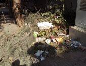 شكوى مصورة تكشف انتشار أكوام القمامة فى شارع الثورة بالدقى