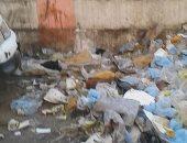 فيديو..أكوام القمامة تحاصر شوارع وميادين القليوبية فى عيد الأضحى