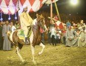أميرة عروسة بترقص عالمزمار.. رحلة الخيول الراقصة إعداد وتدريب وإبداع