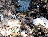 شكوى من إنقطاع المياه وانتشار الثعابين فى قرية ميت اشنا بالدقهلية