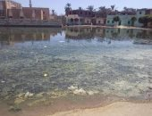 شكوى مصورة تكشف غرق قرية بالكامل فى مياه الصرف الصحى بالشرقية