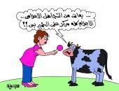 """الأبقار تشكو من التجاهل الإعلامى بكاريكاتير """" اليوم السابع"""""""