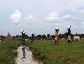 7 ملايين شخص يواجهون مخاطر نقص المواد الغذائية فى جنوب السودان