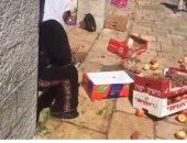 شاهد..الاحتلال يعتدى على بائعات فلسطينيات مسنات فى أسواق القدس القديمة