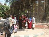 حدائق الحيوان المركزية تؤكد استعادة الأسد هوجان القدرة على الرؤية خلال أسبوع