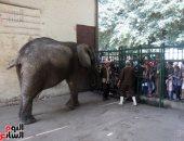 إقبال المواطنين على حديقة الحيوان فى ثالث أيام العيد