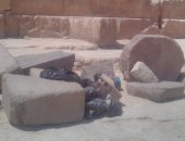 صور.. قارئ يرصد أكياس القمامة بمحيط منطقة الأهرامات