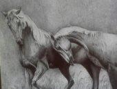 """""""هالة"""" تشارك بلوحات فنية تبرز موهبتها فى الرسم بالقلم الرصاص والألوان"""