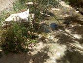 مدرسة بالسويس تغرق فى مياه الصرف الصحى قبل بداية العام الدراسى
