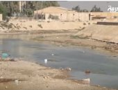 شاهد.. المياه المالحة تهدد أهالى البصرة بالعراق