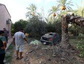 """""""الإسكوا"""" تؤكد التكلفة الاقتصادية للصراع فى ليبيا تفوق 576 مليار دولار"""