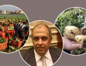 """""""الزراعة"""" تعلن عن تصدير 4 ملايين و560 ألف طن خضر وفاكهة منذ بداية العام"""