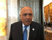 """وزير الخارجية من نيوريوك: قمة """"مصرية - أمريكية"""" بين الرئيس السيسي وترامب"""