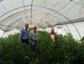 وزير الزراعة: مركز البحوث الزراعية دوره تأمين الغذاء للمصريين