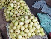 """""""الزراعة"""" تحدد 4 إجراءات لمواجهة الآفات الحشرية لأشجار الجوافة بشهر ديسمبر"""