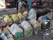 الزراعة تقدم روشتة لأشجار الجوافة لزيادة الإنتاج والتصدير.. تعرف عليها