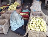 """""""تصديرى الحاصلات الزراعية"""" يطالب مصدرى الجوافة الالتزام بالمعايير"""