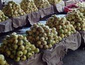 الزراعة تعلن عن ارتفاع صادرات الجوافة والمانجو لـ16 ألفا و502 طن