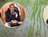 """الأرز يبحث عن قرار الاستيراد قبل حدوث الأزمة.. عجز 300 ألف طن بين الإنتاج والاستهلاك.. وزير التموين لـ"""" اليوم السابع"""": لدينا تعاقدات لتوفير احتياجات البطاقات حتى نهاية ديسمبر المقبل"""