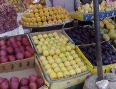 حملات إرشادية فى حقول الخضر والفاكهة تجنبا لمخاطر الموجة الحارة
