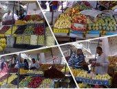 """""""الزراعة"""" توافق على تصدير 45 ألف شتلة فاكهة من 13 صنفًا لـ4 دول"""
