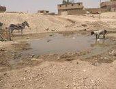 مياه الصرف تغرق طريق أبو مناع غرب بقنا