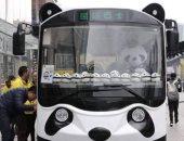 فى كوكب اليابان.. حافلات على شكل باندا لإسعاد المواطنين.. صور