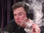 تدخين إيلون موسك للماريجوانا يتسبب فى انخفاض أسهم تسلا 6%