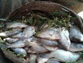 استقرار أسعار الأسماك بالأسواق رغم إلغاء رسوم الصادر