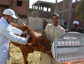 الخدمات البيطرية: تحصين 509 آلاف رأس ماشية ضد 5 أمراض وبائية خلال 30 يوما
