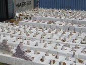 الإمارات تحبط تهريب 365 كيلوجراما من المخدرات